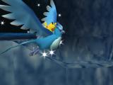 Kijk hoe de verschillende Pokémon interacties met elkaar aangaan!