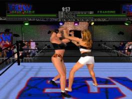 Er zijn ook diverse schaars geklede vrouwelijke vechters aanwezig in de game.