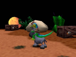 Dat is ofwel een gigantische gekko, of een bijzonder kleine ezel.